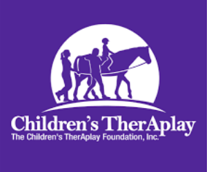 Lisa Kobek Elected to TherAplay Board of Directors
